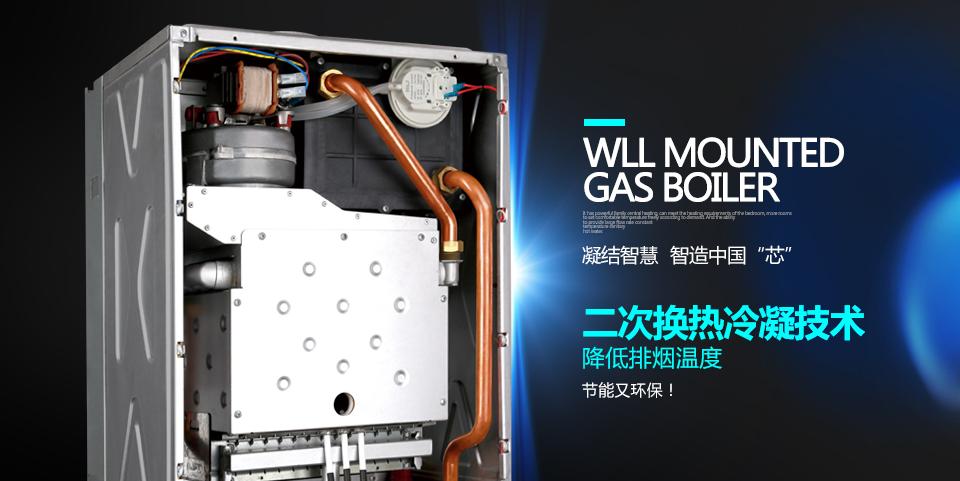 葡京国际娱乐注册采暖炉ECA3产品简介