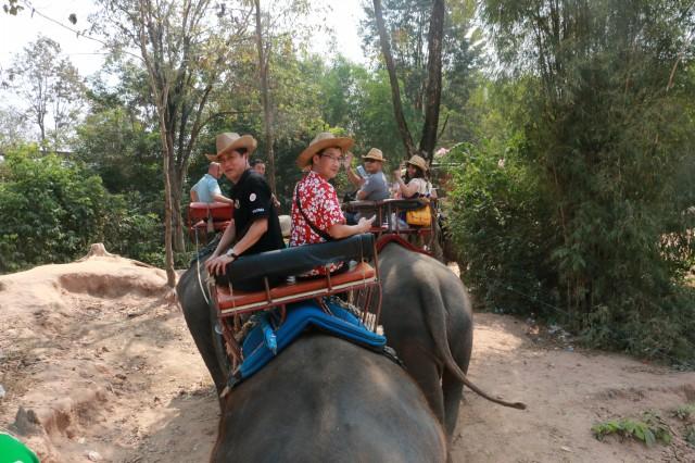 瑞马加盟商骑象游玩不也乐乎