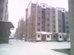 新疆锦轩房地产开发有限公司瑞马壁挂炉采暖工程案例