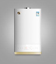 瑞马VM-P1(DF)双能源壁挂炉